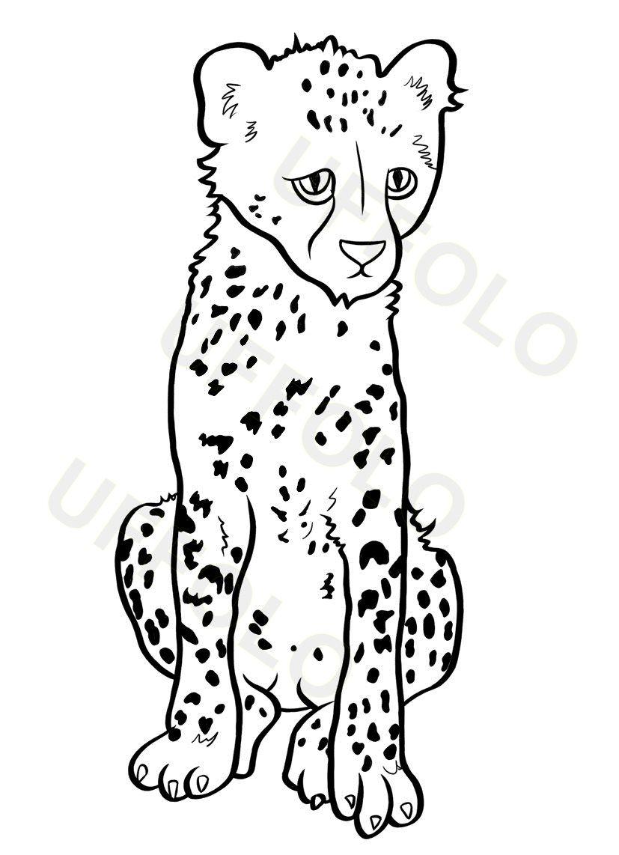Cucciolo ghepardo animali disegnare animali disegni e for Disegnare progetti