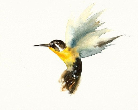 Watercolor Hummingbird | Watercolor paintings of animals ...