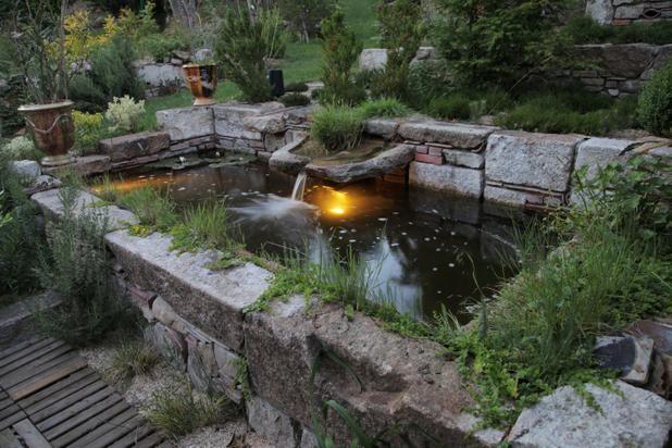 Bassin moderne | Jardins, Parcs & Bassins | Pinterest