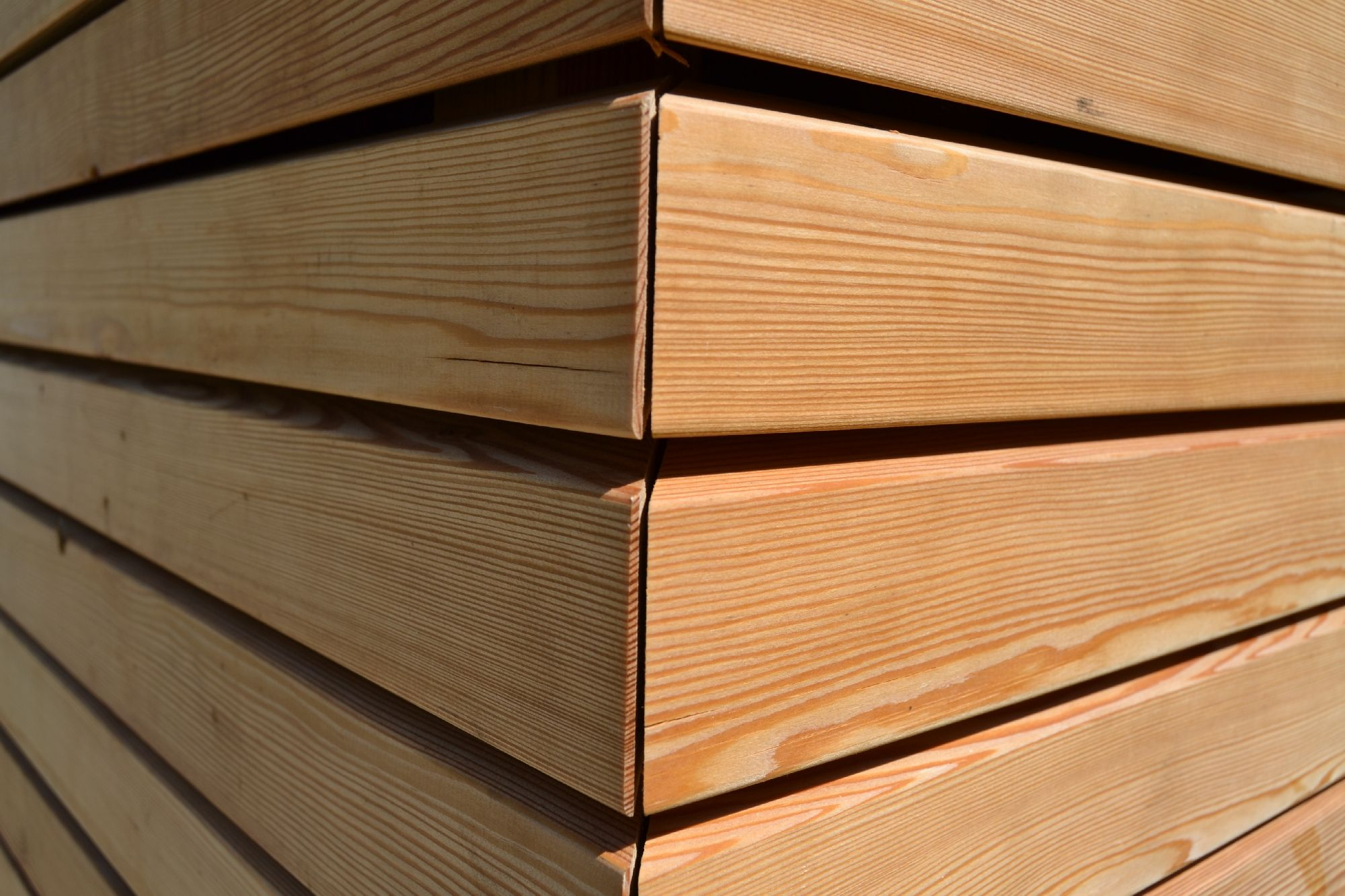LARICE SIBERIANO - Netto nodi. Rivestimenti in legno per pareti esterne.  La...
