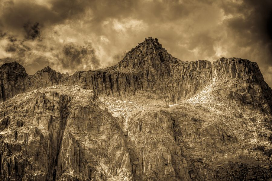 on the rocks in sepia by pino stranieri
