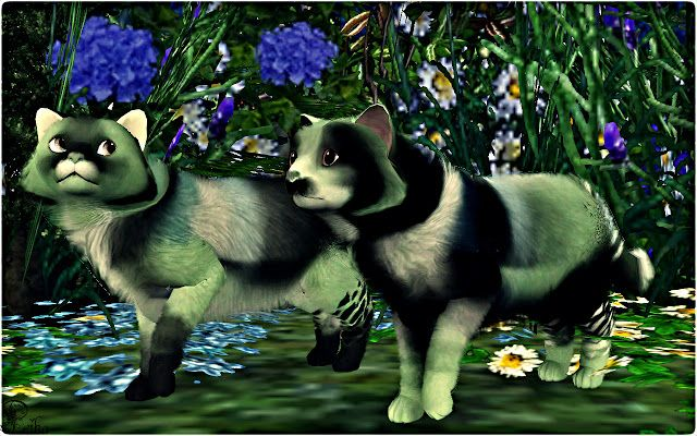 grissela and ascabarry fantasy pets by falcora sims 3 stuff i rh pinterest co uk