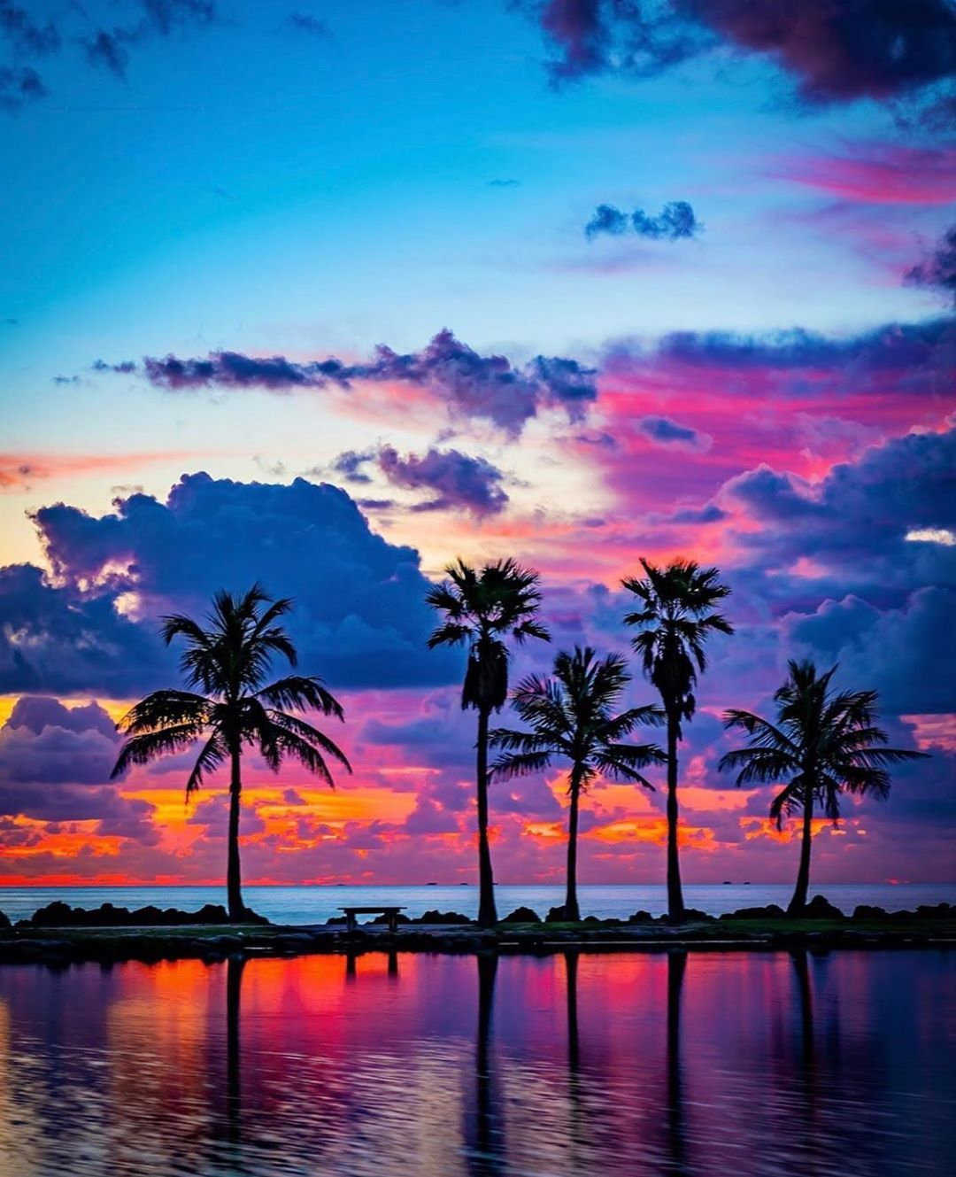 Roam Florida On Instagram Today S Roamer Is Oaliving Chosen By Activitymonster Show Some Love To The Sky Aesthetic Scenery Wallpaper Sunset Pictures