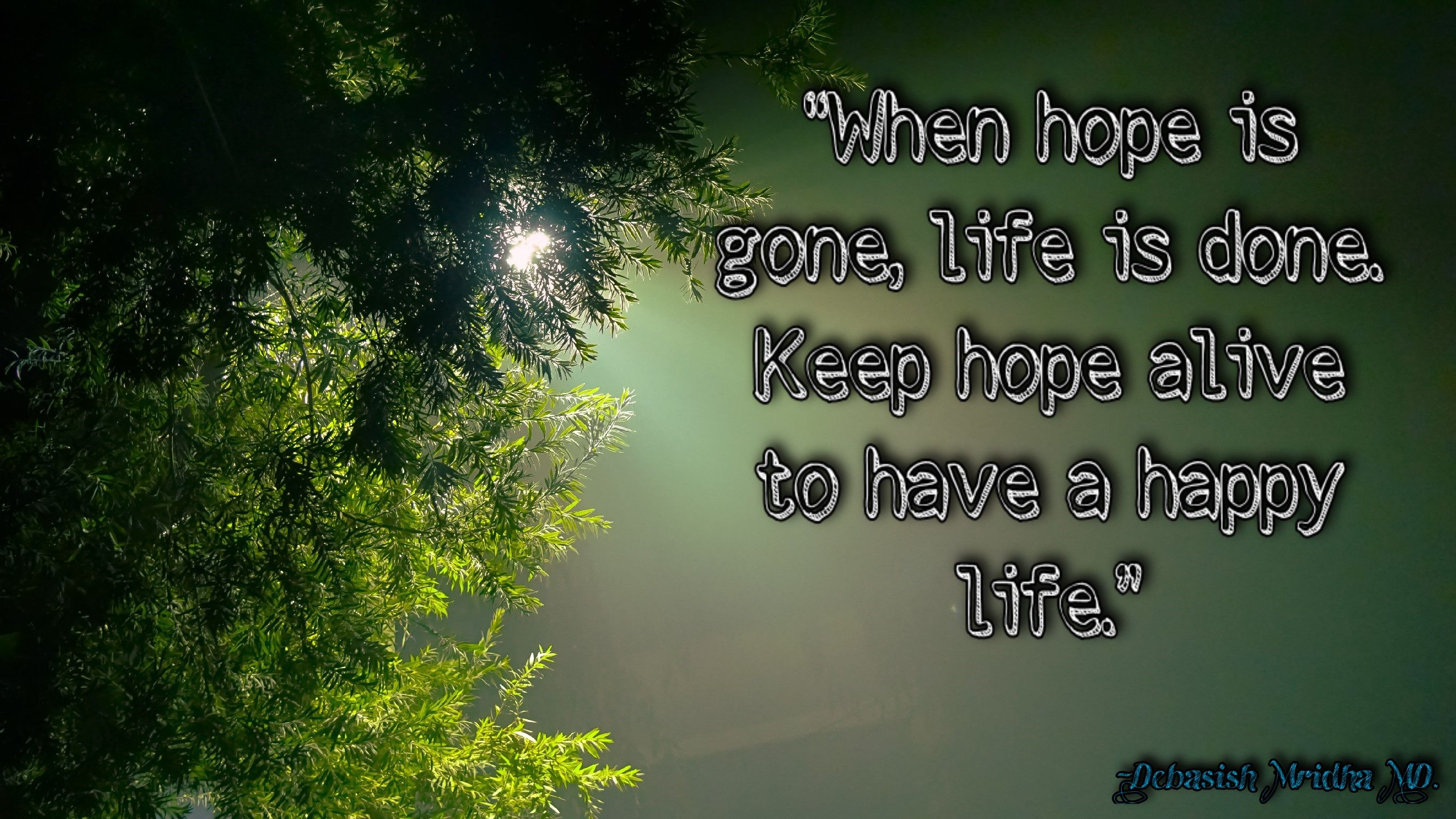 debasishmridha keep hope alive to have a happy life debasishmridhaquotes philosophy quotes life hope done happy alive gone