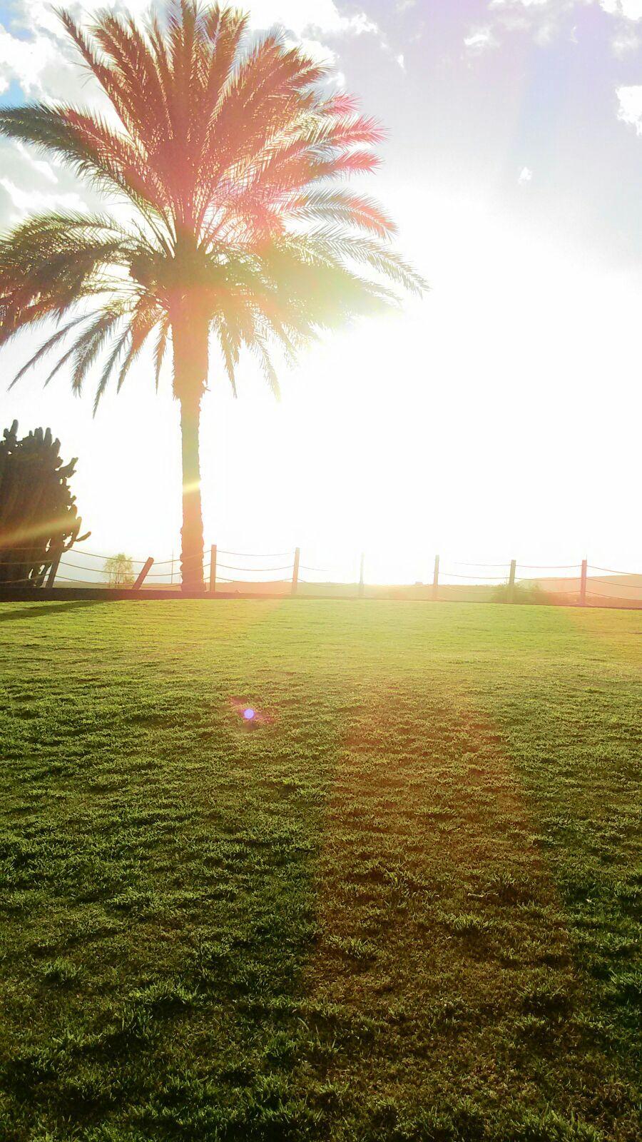 #grancanaria #sunsetwalk #sport #spirit #wellness #sportteam