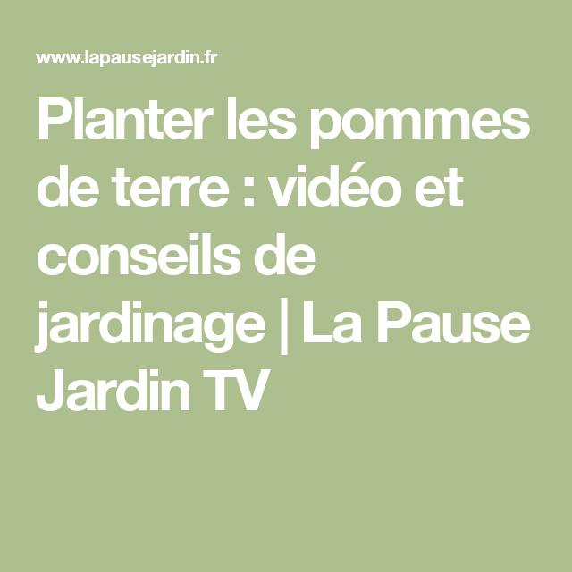 Planter les pommes de terre : vidéo et conseils de jardinage | La Pause Jardin TV
