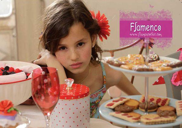 FLAMENCO SPRING-SUMMER 2009 by Ali Larrey, via Behance