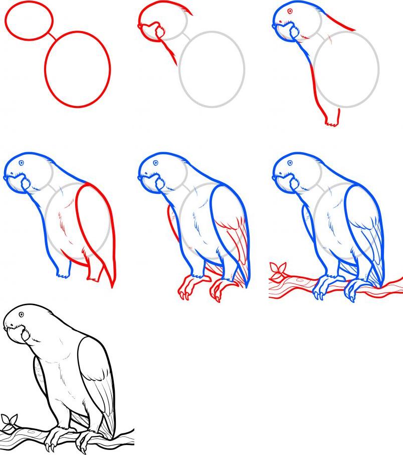 там, нарисовать сложные картинки поэтапно дубинки крепления бесплатной