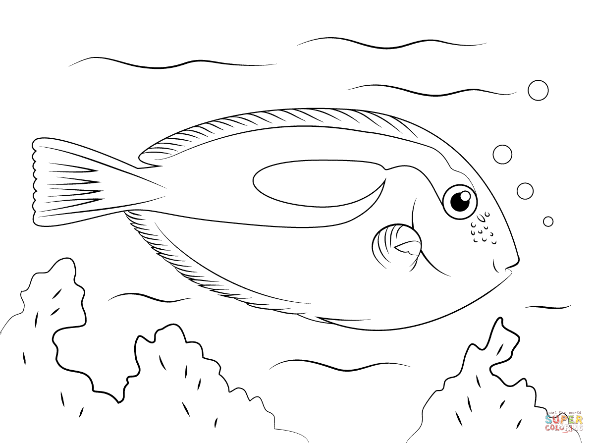 tropical fish coloring pages free printable pictures kids