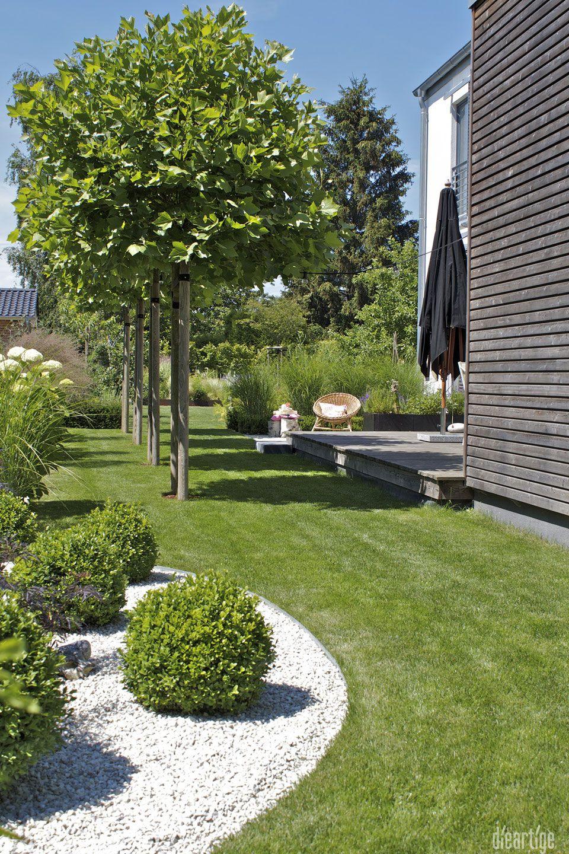 dieartigeBLOG - Sommergarten mit Schatten von Platanen, Buchs, Ballhortensien, Gräsern #modernegärten