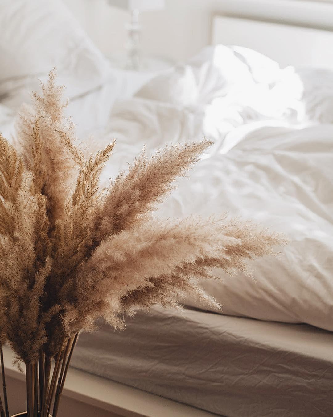 """Nina Schwichtenberg on Instagram: """"Up on fashiioncarpet.com - ALLES ZUR NEUEN TREND PFLANZE PAMPASGRAS � Angetan hat es mir flauschige Gras optisch sofort und praktisch ist…"""""""