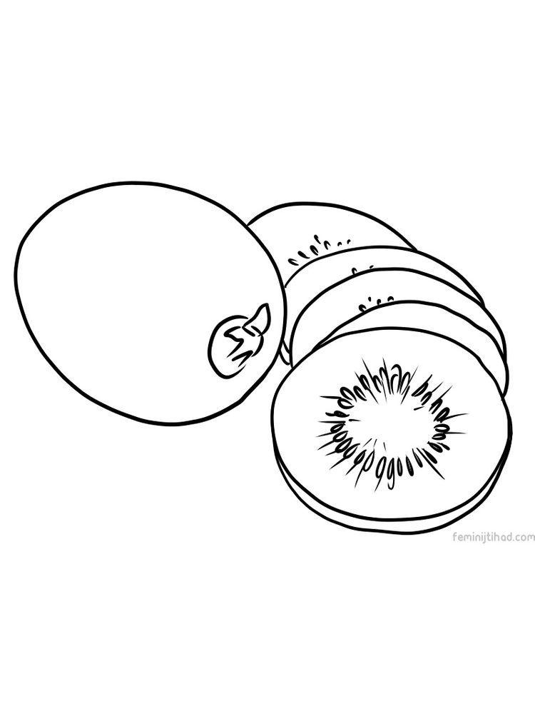 Kiwi Coloring Image Print Com Imagens Desenhos