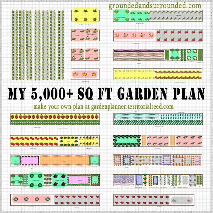 My 5 000 Sq Ft Vegetable Garden Plan Vegetable Garden Planning