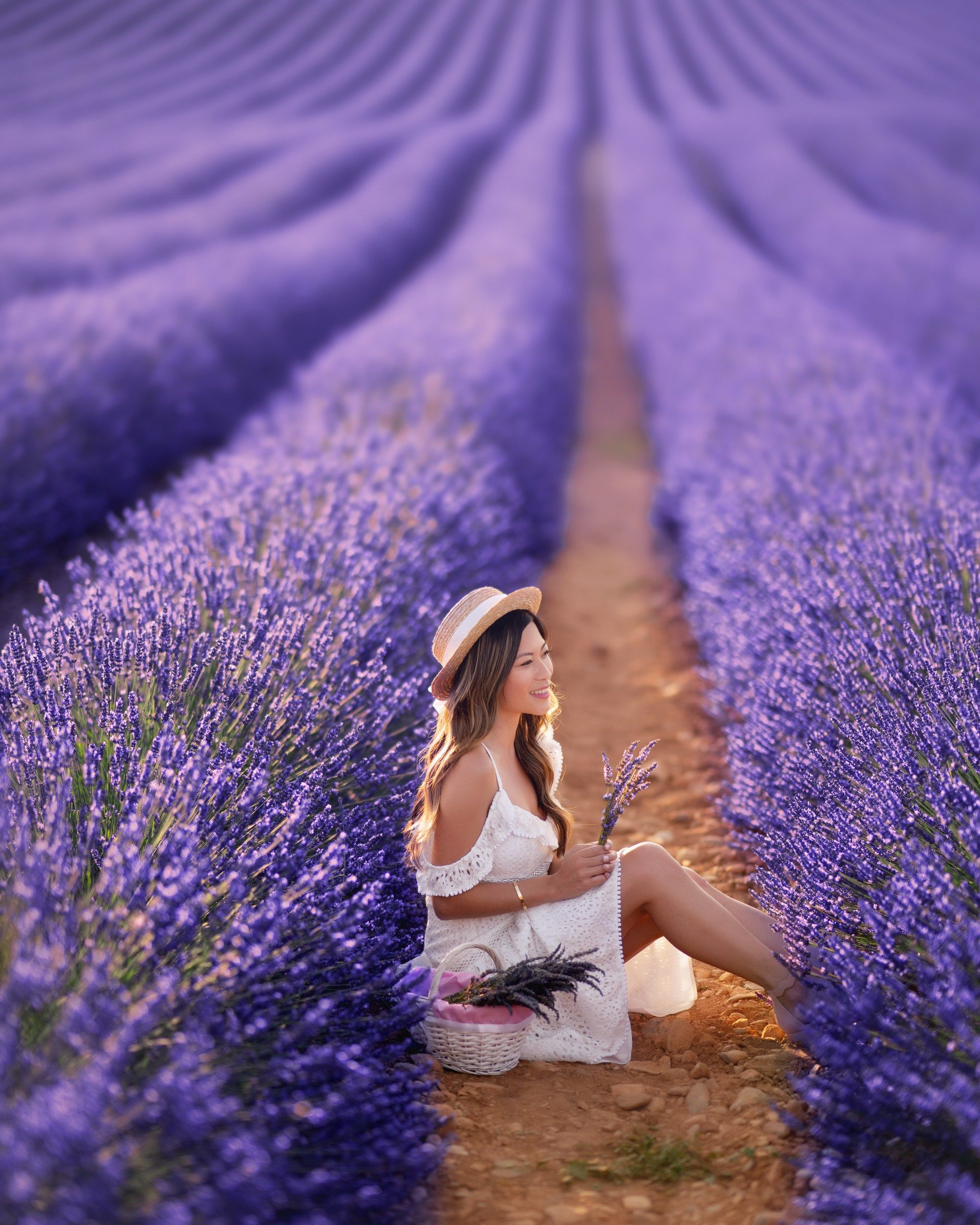 Quick Guide To Aix En Provence Lavender Fields Photography Lavender Fields France Lavender Fields