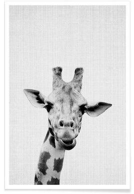Resultat De Recherche D Images Pour Affiche Noir Et Blanc Vintage Animaux Noir Et Blanc Animaux Girafes