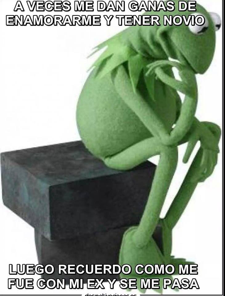 69e3d6d5e0b56f7a0bdcee96710ee4c9 rana rené, meme, mexican humor, spanish, kermet the frog