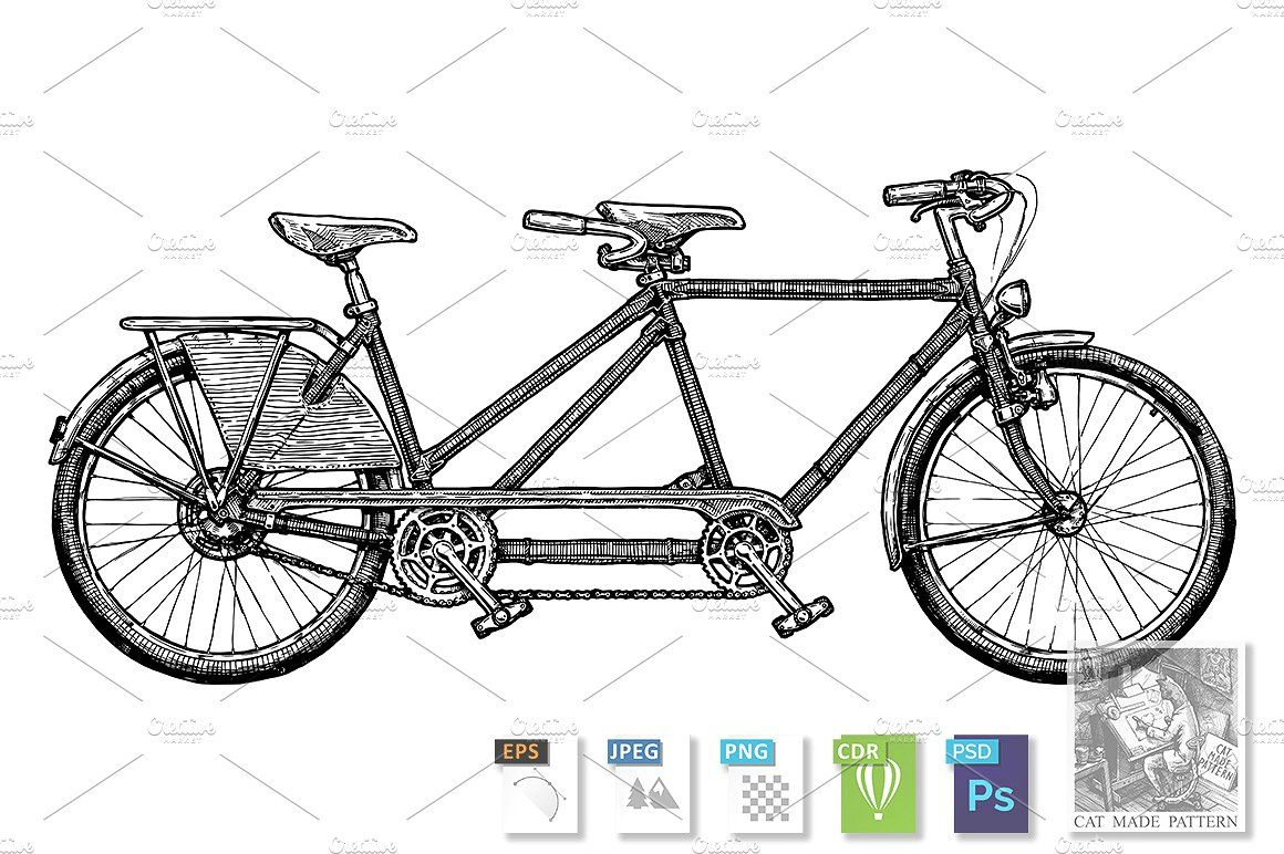 Types Of Bikes Bicycle Draisine Penny Wooden Bike Illustration