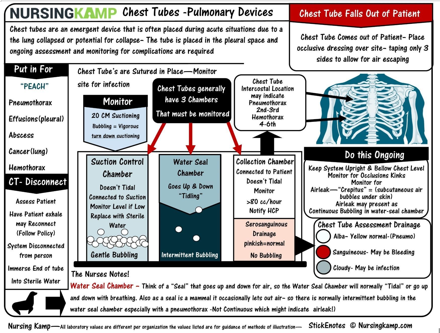 Nursing Resources Study Sheets For Student And Nclex Questions
