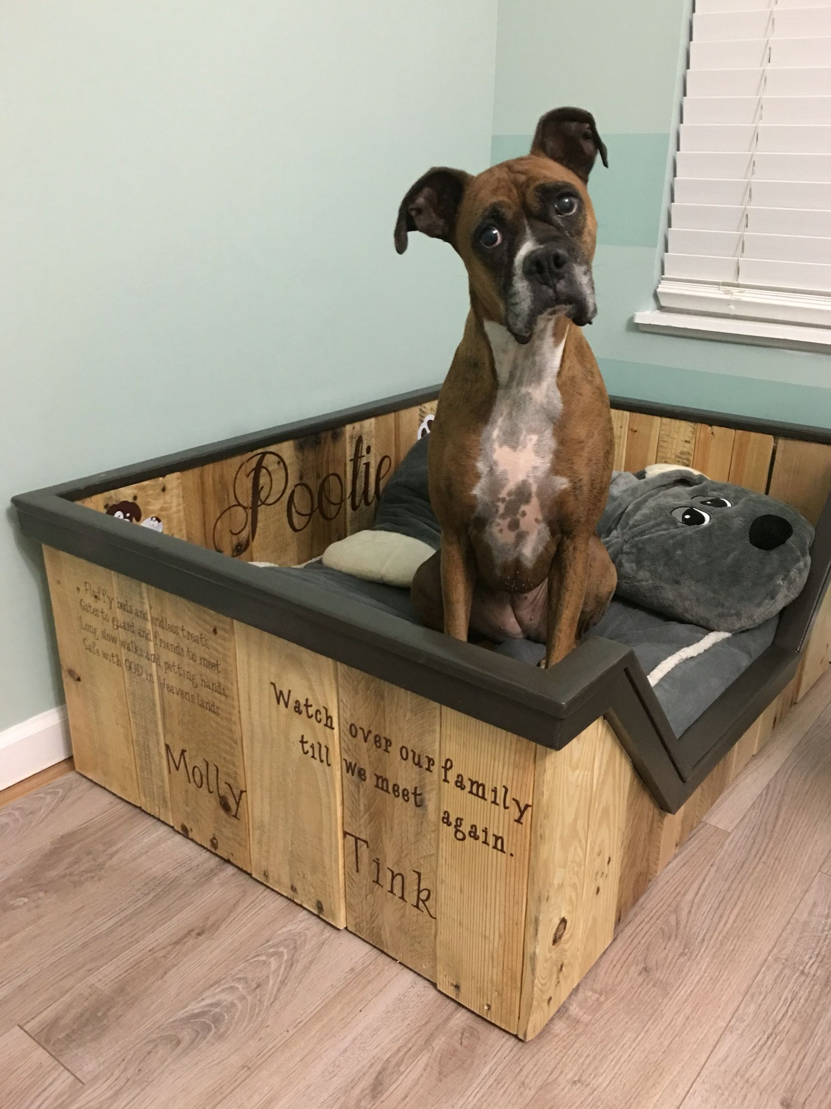 Boxer Bett Dog Bed Made From Some Scrap Pallets Dog Training Tips