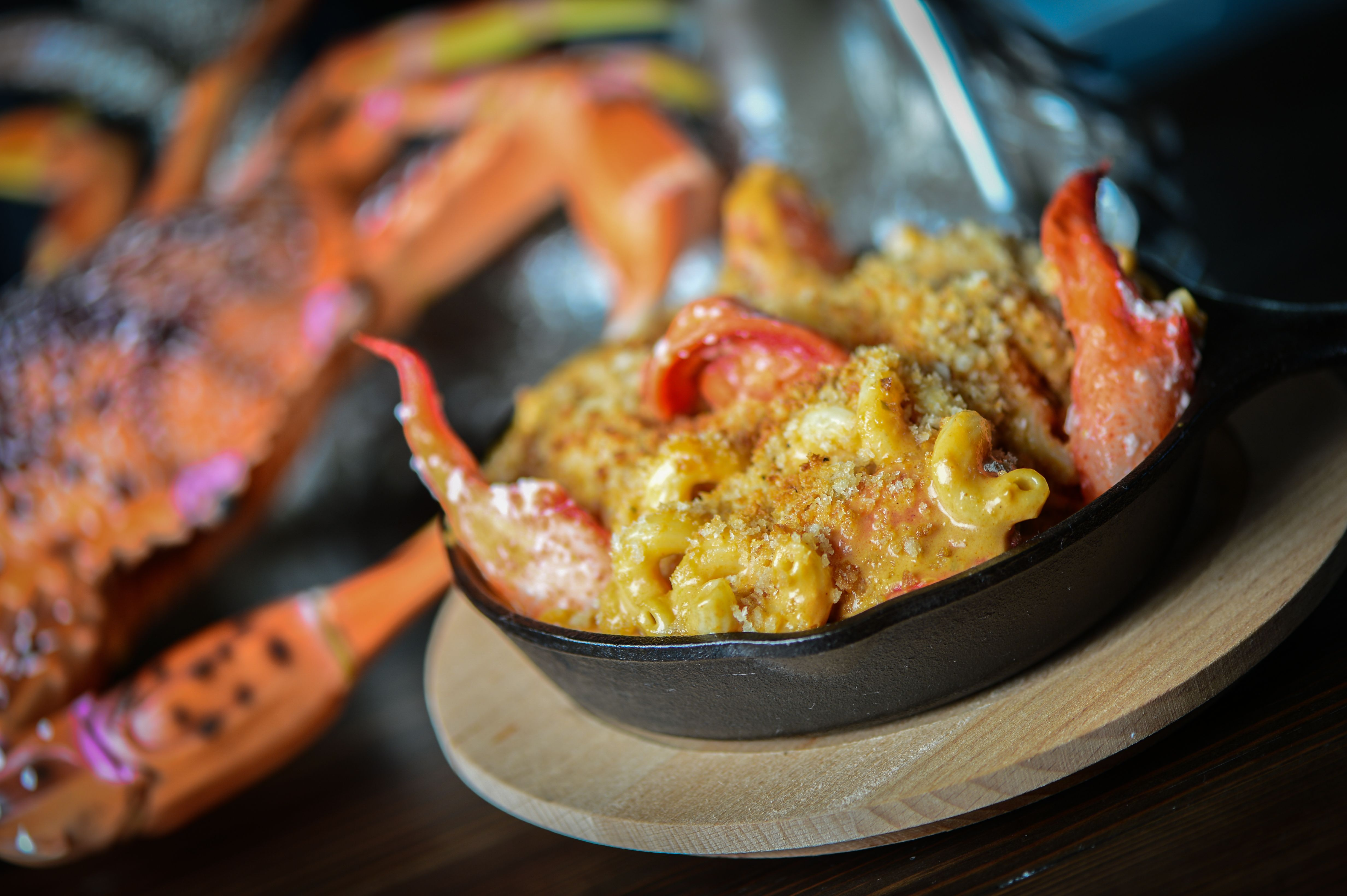 Lobster Mac n' Cheese: shucked Maine lobster, cavatappi pasta, lobster cheese sauce, bacony bread crumbs.