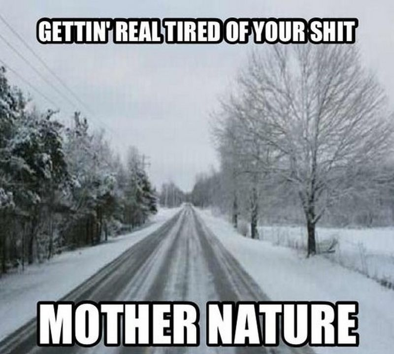 55 Funny Winter Memes That Are Relatable If You Live in the North