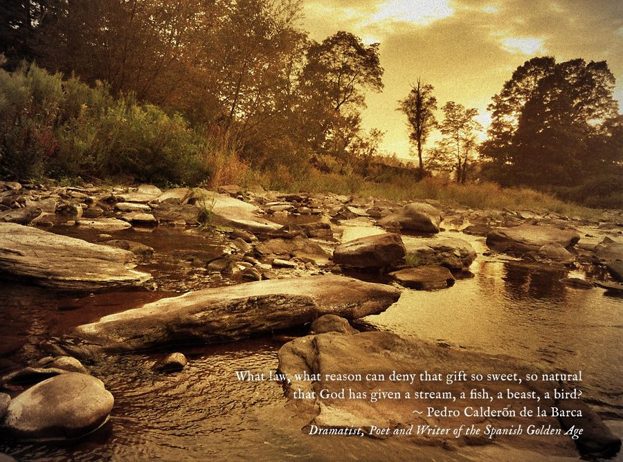 """""""That gift so sweet... a stream."""""""