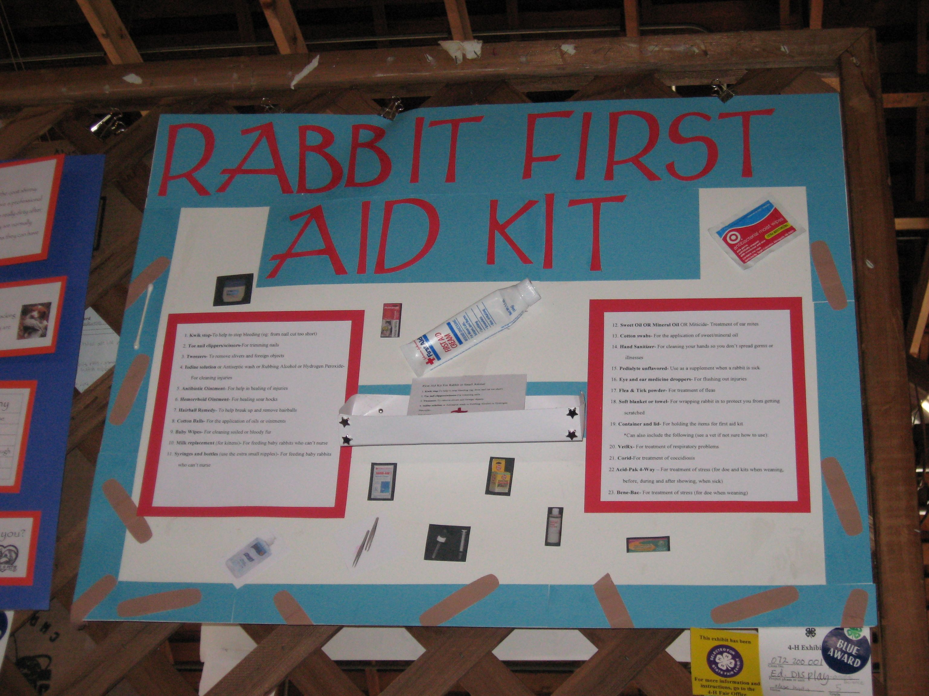 Rabbit First Aid Kit Poster First Aid Poster Animal Science Projects First Aid