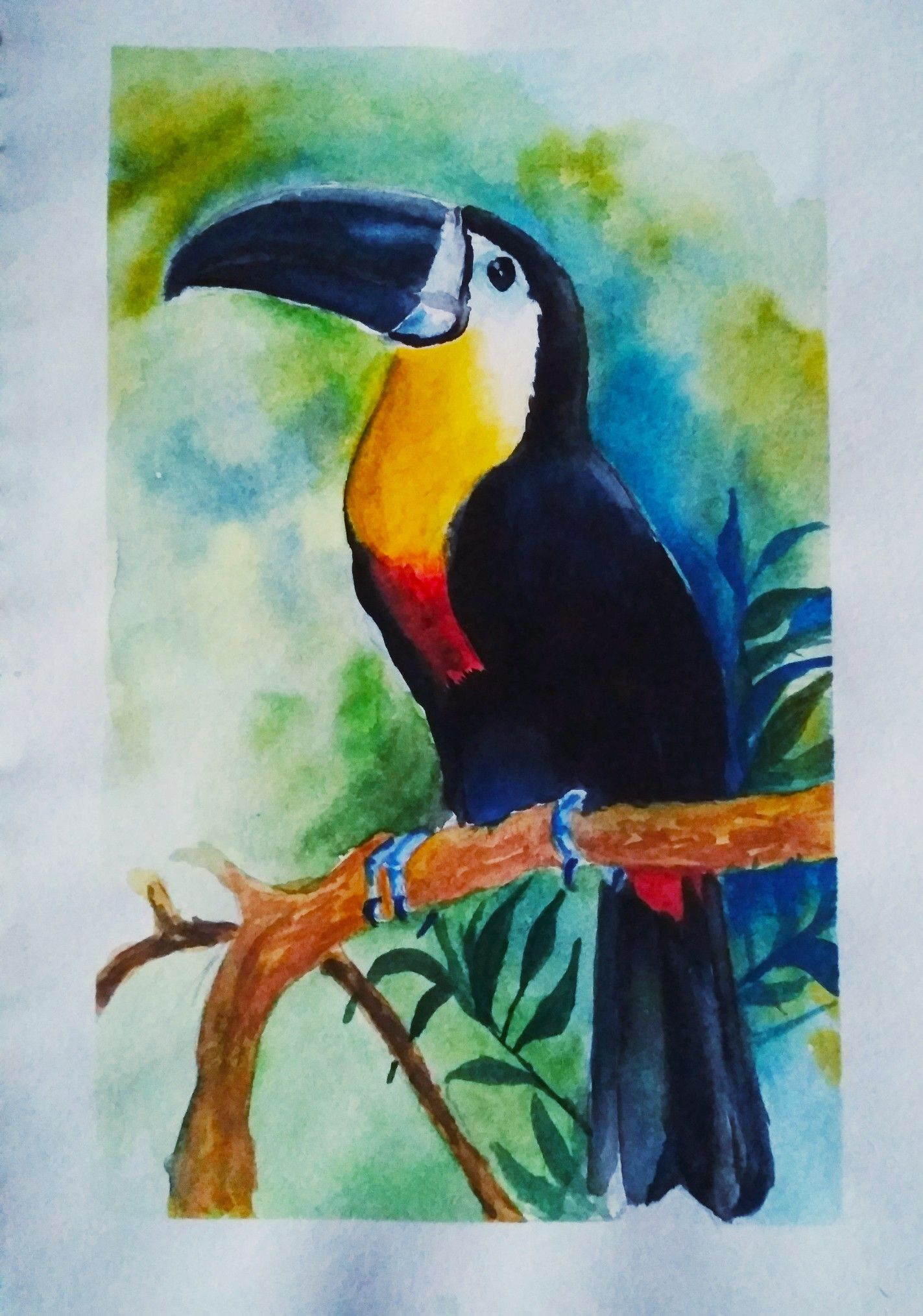 Toucan Bird Art Original Watercolor Painting Toucan Watercolor