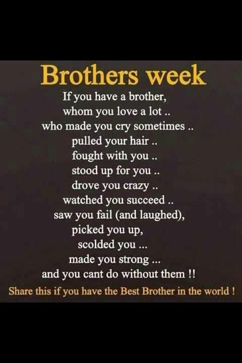 I Love My Brothers Brother Quotes I Love My Brother Sibling Quotes