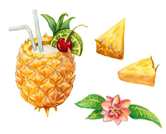 Pina Colada, Commission by Alicia Severson Illustration and Design