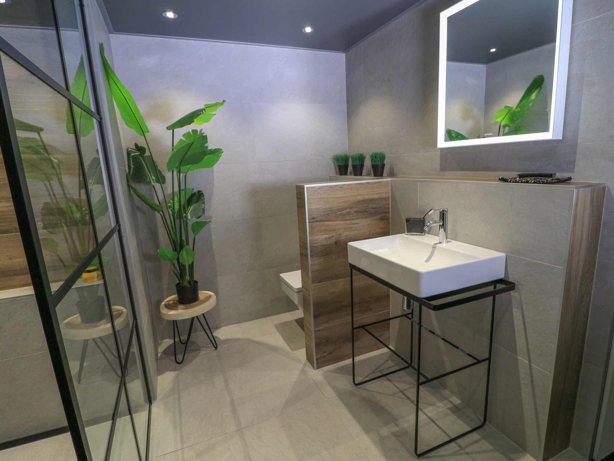 Strakke badkamer met een grote bananenplant het staal van het
