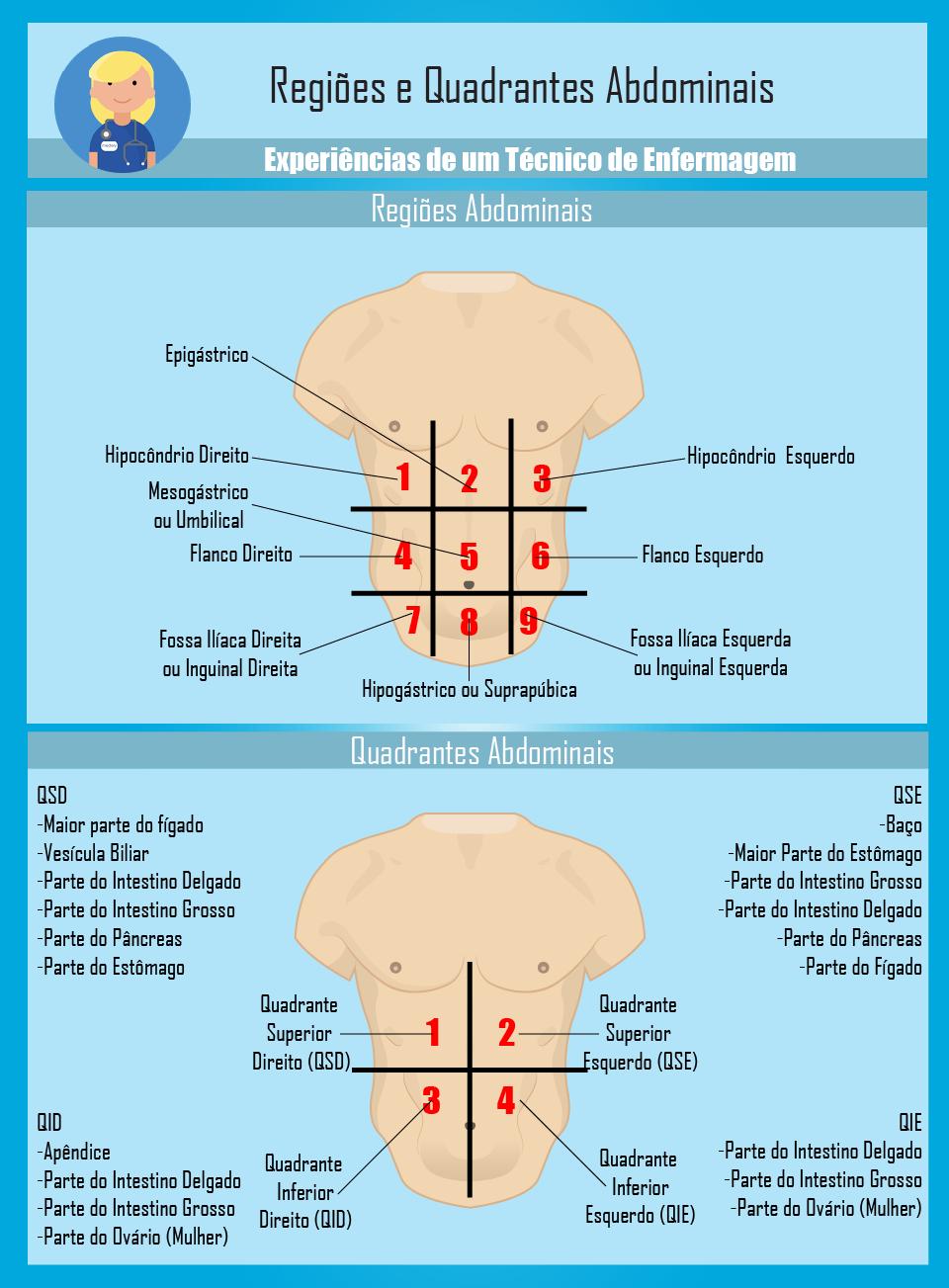 Regiões e Quadrantes Abdominais   Medicina   Pinterest   Medicina ...