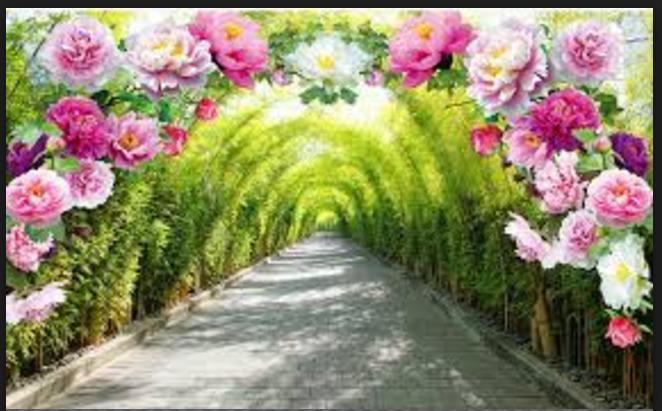 Paisajes Para Fondo De Pantalla: Paisajes De Flores Para Fondo De Pantalla De Android