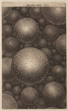 Thomas Wright, From: An Original Theory or New Hypothesis of the Universe, 1750