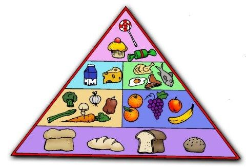 Food Groups Spanish Healthy School Snacks Usda Food Groups Interactives Food Nutrition
