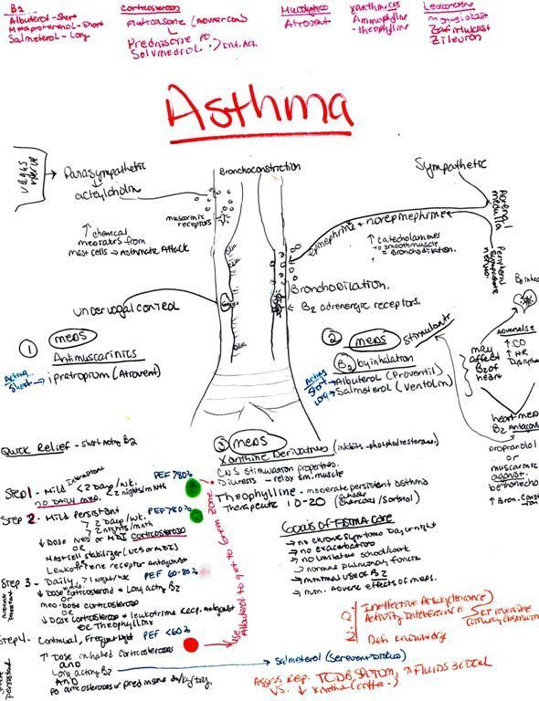 Pin on Asthma