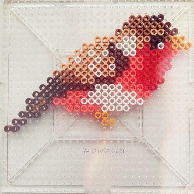Bird perler beads by dixiebellegifts