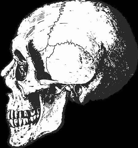 Halloween Tekeningen Maken.Skelet Schedel Bones Halloween Tekenen Leer Je Zo