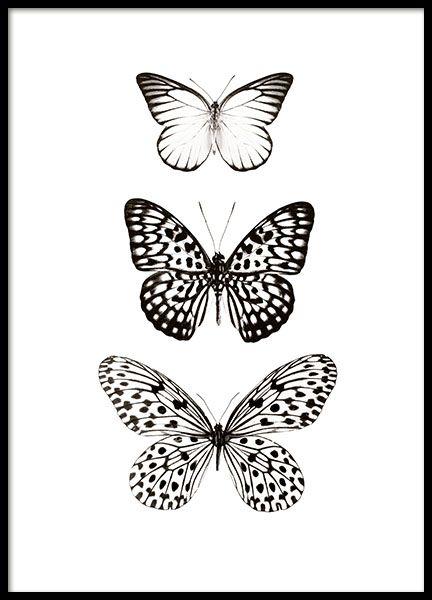 tavlor med fjärilar