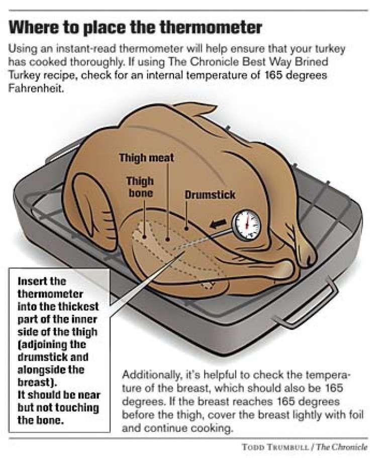 Proper Probe Placement In A Turkey