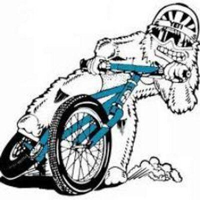 yeti bikes logo s pinterest