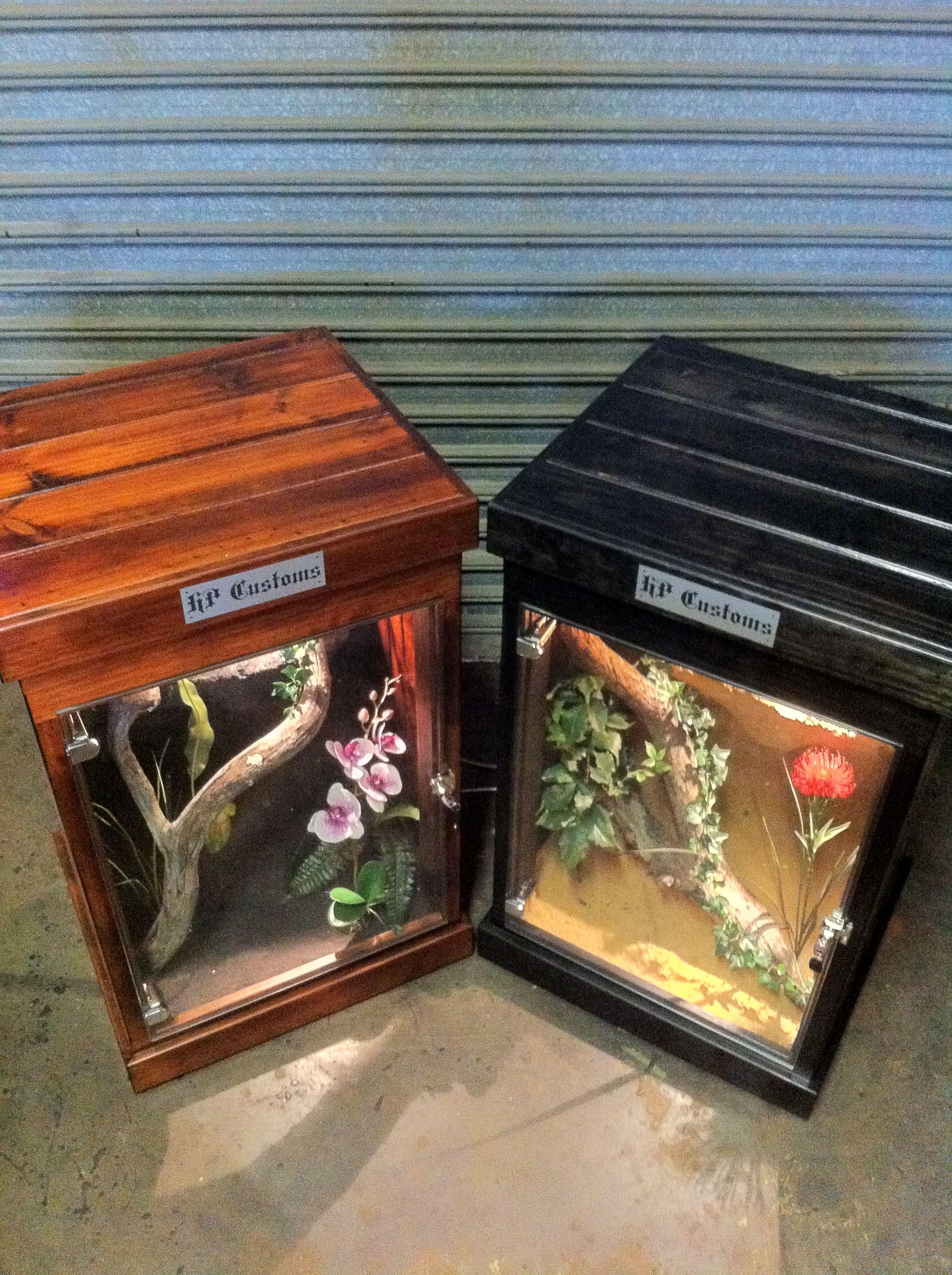 Https Www Facebook Com Pages Hp Customs Custom Reptile Enclosures 572704122760765 Reptile Enclosure Reptile Cage Reptile Terrarium