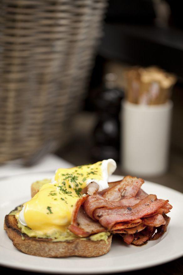 free range poached eggs w/ grilled bacon, avocado & hollandaise on sourdough toast