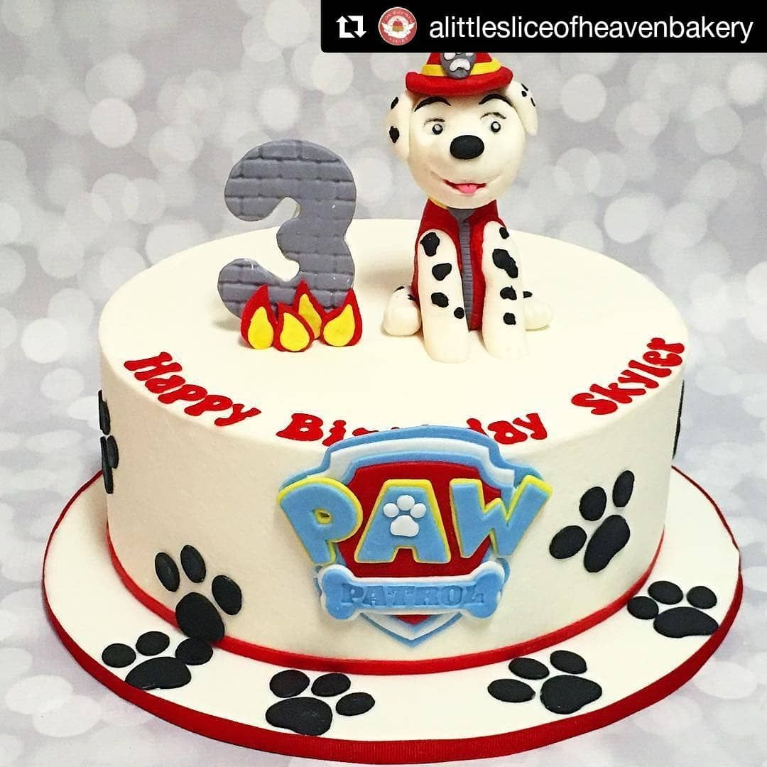 Pin by Lisa Brunson on Nathan's birthday Paw patrol cake