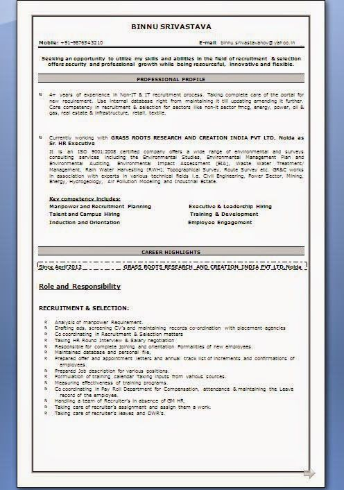 europass format cv Beautiful Excellent Professional Curriculum Vitae ...