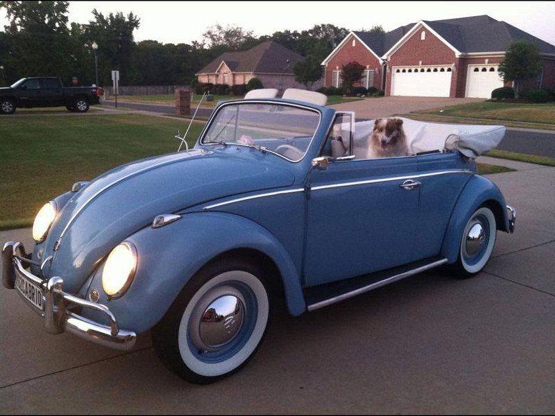 Laura Dickey Frazee Katsaridaki Volkswagen Convertible German Toys