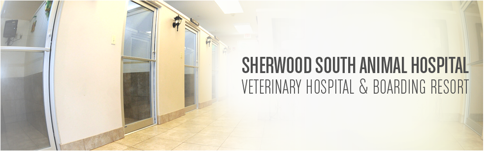 Pet Boarding Resort Baton Rouge La Sherwood South Animal Hospital Pet Boarding Animal Hospital Veterinary Hospital