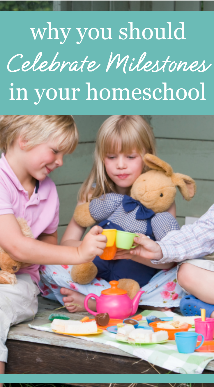 Encouragement for homeschool moms: Why you should celebrate ...
