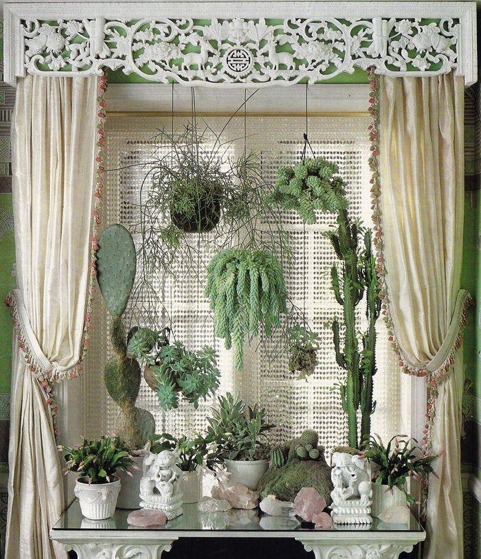 fen tre cactus et plantes grasses cactus pinterest plantes grasses cactus et plantes. Black Bedroom Furniture Sets. Home Design Ideas