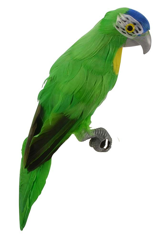 Lifesize green Brazilian parrot prop, made with feathers